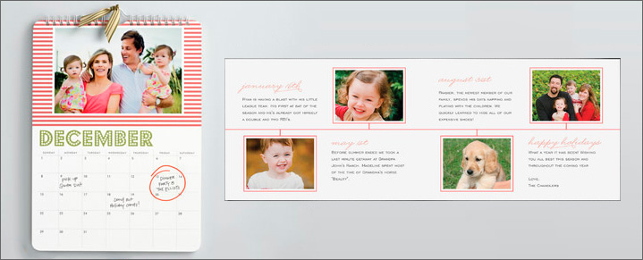 Wild Plum Photography Holiday Card Samples