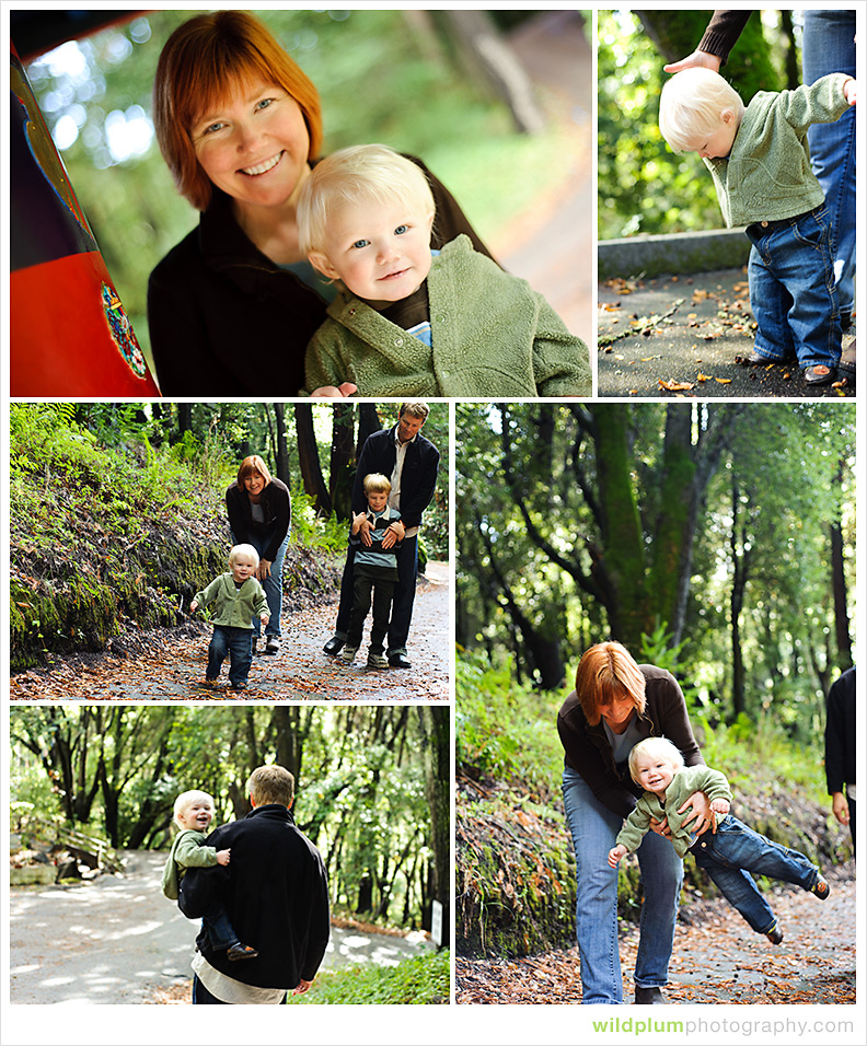 One Year Old Portraits - Wild Plum Photography